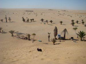 Trouwen in Namibie